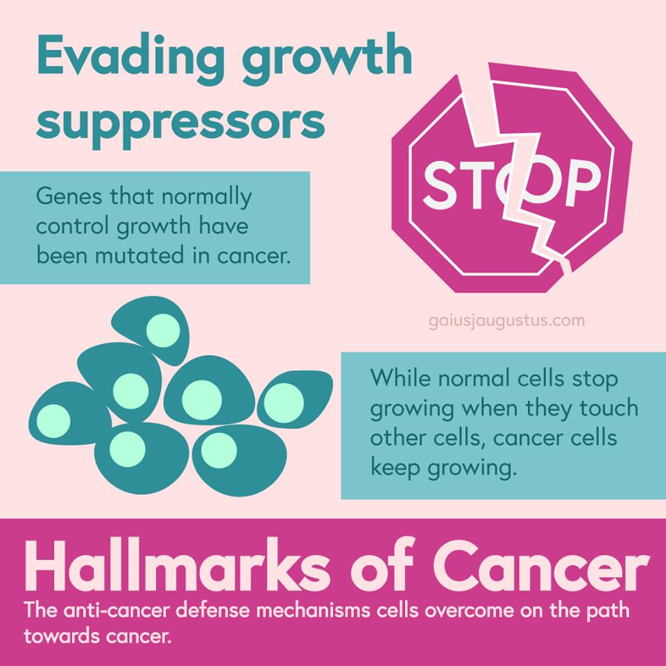Cancer infographic 2